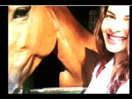 Jacqueline Fernandez kissing the Horse