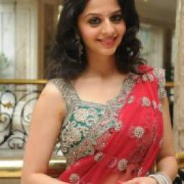 Actress Vedhika New Hot Saree Stills