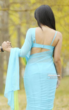 Trisha Krishnan - Cute look show in blue saree