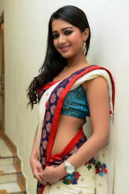 Catherine Theresa HQ Hot Stills in Saree