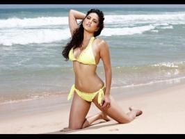 Here are the top Bikini babes of 2012 like Deepika Padukone, Anushka Sharma, Sunny Leone, Bipasha Basu.