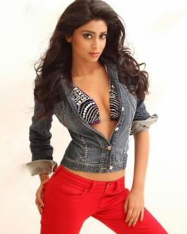 Shriya Saran Tamil Cinema News World Cinema News Cinema News Hindi Cinema News Movie Reviews Movie Previews Music Reviews Actor Galleries Actress Galleries Event Galleries Todayrunning.com