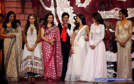 BW Stars At Zee Cine Awards 2013 Photo Gallery, Celebs At Zee Cine Awards 2013