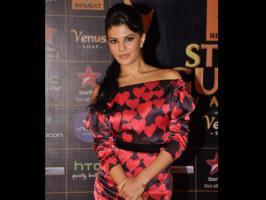 Bollywood stars like Salman Khan, Vidya Balan graced Renault Star Guild Awards 2013.