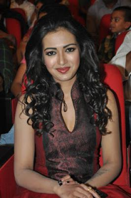 Catherine Tresa Hot Stills,Catherine At Iddarammayilatho Audio Launch