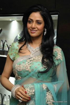 Sridevi in Saree Photo Set