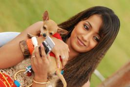 Actress Trisha Krishnan, a long-time People for the Ethical Treatment of Animals (PETA) India supporter, has written to Chennai Mayor Saidai Duraisamy  and more movies.infoonlinepages.com
