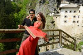 King Nagarjuna's mass entertainer 'Bhai' is going to complete its shooting.More… http://movies.infoonlinepages.com/movienews-tollywood/nagarjuna-bhai-leaked-dialogues.html