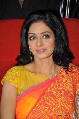 Sridevi in Saree Photo Gallery