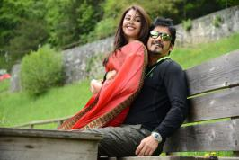 Akkineni Nagarjuna's upcoming film Bhai directed by Veerabhadram Chowdhary , Richa Gangopadhyay acting as a female lead and more movies.infoonlinepages.com
