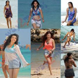Tollywood beach babes-Exclusive pics, Telugu Film Heroines hot beach side photo stills gallery, South beautiful hot heroine latest pics at beach photos