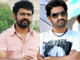 NTR who is busy with the shooting schedules of Santhosh Srinivas directorial tentatively titled Rabhasa has given nod to his next film in Sukumar direction.
