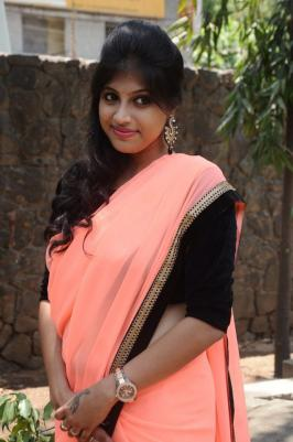 Actress Veena Nair at Naangellam Edagoodam Press Meet Stills, Veena Nair Saree Photos, Veena Nair New Stills