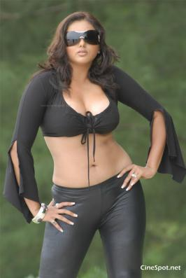 , Namitha wiki,Namitha hot navel show stills ,Namitha spicy hot photos ,Namitha hot pics ,Namitha HD wallpapers  | Tamil Movie Gallery