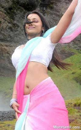 Actress Hot Photos, Actress Hot Saree Stills, Saree Hot Gallery