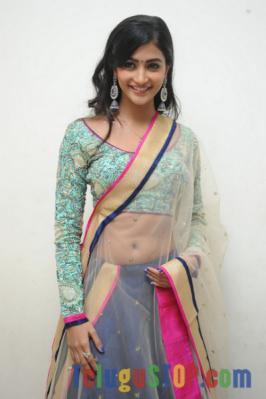 Pooja Hegde Latest Pics-Photo Album Images