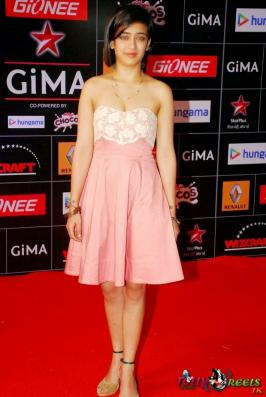 Celebs Attend The Ceremony of GIMA Awards 2015 Photos