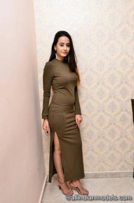 Amiksha At New Year Bash Curtain Raiser 2018: It doesn't get any hotter than Amiksha and this gallery of her sexiest photos.