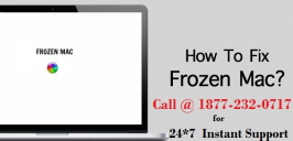 If your MacBook is showing a freezing problem just find the right solution given here by the computer experts. Our experts have explained here the best methods of solving freezing problems on MacBook computers and other Mac devices.  If your Mac problems are not solved you can call us for online help and our certified technicians will help you to deal with such issues. With us you will never face technical problems with your MacBook computers and our online help service will help you remotely to fix such issues.        Get in touch with us for any technical assistance!! Toll-free Number of Customer Support:  1-877-232-0717 You can follow us on:   Follow us on Twitter: https://twitter.com/CallAppleSuppor Like us on Facebook: https://www.facebook.com/macsupportnumber/ Follow us on Google+ : https://plus.google.com/u/0/+MacTechnicalSupportAppleSupportPhoneNumber Connect with us on Pinterest : https://www.pinterest.com/mac_tech_help/ Subscribe our channel: https://www.youtube.com/channel/UCaz3uFDttY0YeU9kUVe31gQ Support Hrs: 24*7 (Mon-Sun) Email :- support@mactechnicalsupportphonenumber.com