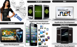 TipEnter mobile applications development team delivers iPhone, Android, Windows & Web apps development services with high quality from Bangalore,India makes the team and company proud