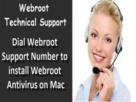 Webroot Support- Looking for the easy steps to download and install your Webroot SecureAnywhere antivirus? Find them all here and protect your device by activating this antivirus using the right Webroot SecureAnywhere key code. For any support or to fix any error, contact Webroot toll-free number  !