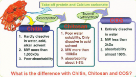 Marshall Marine is highly qualified in preparing Chitosan oligosaccharides. Presence of shorter chain lengths and amino groups in glucosamine fetch them readily soluble in water(Liquid)