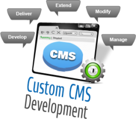 Riseintechnology is one of the best CMS Development Company in India, We have professional CMS development team focus to provides best services to our clients at wide range.