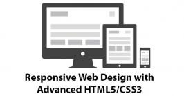 Riseintechnology is the leading company to provides HTML5 responsive websites designing and services to create best apps for all major browsers with responsive web design and mobile friendly.