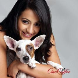 Will Trisha care for animals only - Trisha's strong reaction against animal cruelty, in the context of a Uttarakhand BJP MLA allegedly attacking a police horse