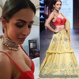 Malaika Arora Hot Sexy Unseen Photo Gallery: It doesn't get any hotter than Malaika Arora and this gallery of her sexiest photos. She is an Indian actress,