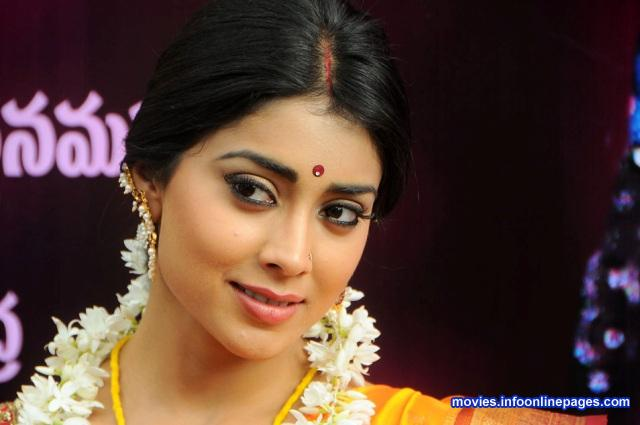 Shriya Latest Saree Photos