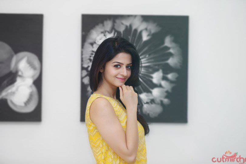 Latest Pictures of Vedhika