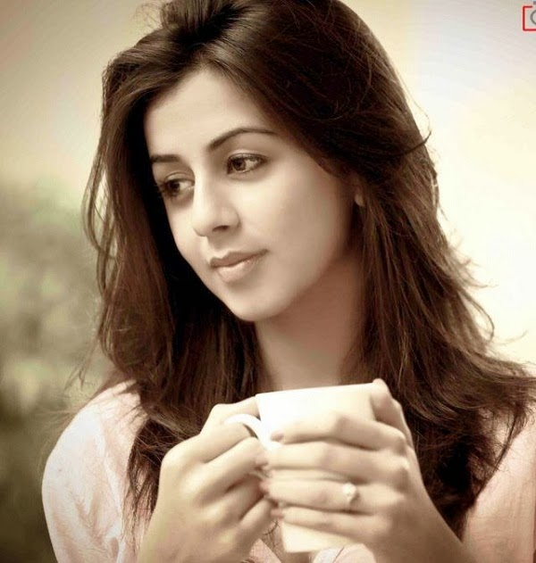 Malayalam Actress Nikki Galrani HD Latest film, movie, Malayalam Actress Nikki Galrani HD Charming Latest stills, Malayalam Actress Nikki Galrani HQ Latest photos, Malayalam Actress Nikki Galrani HQ Latest gallery, Malayalam Actress Nikki Galrani Latest in news, Malayalam Actress Nikki Galrani Latest Magazine photos, Malayalam Actress Nikki Galrani Gallery