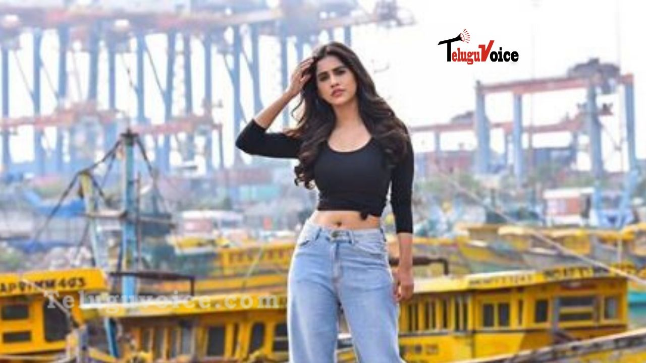 Hot Nabha Natesh in Loose Pants!