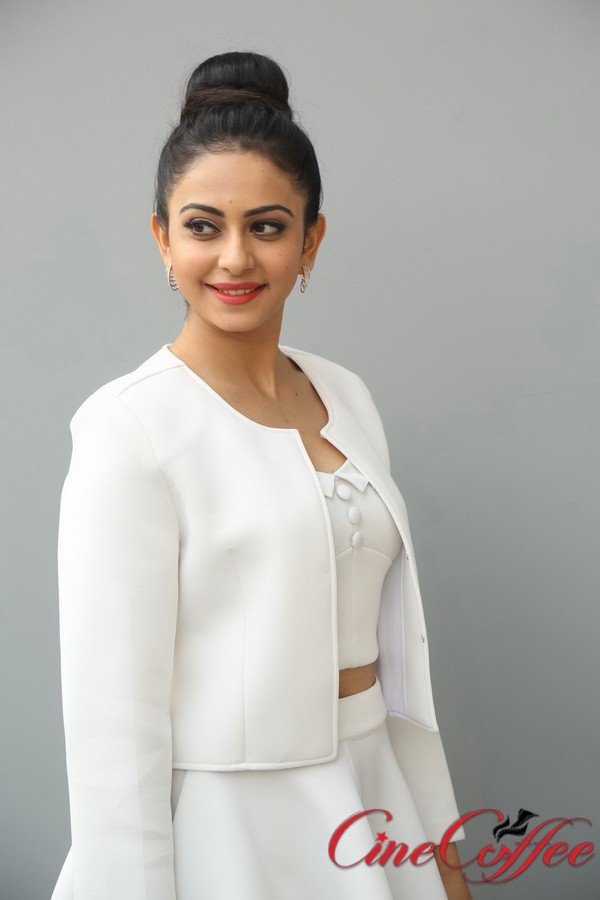 Rakul Preet Singh Images, Latest Stills, Pictures, Gallery, Hot Clips, Sexy Pics