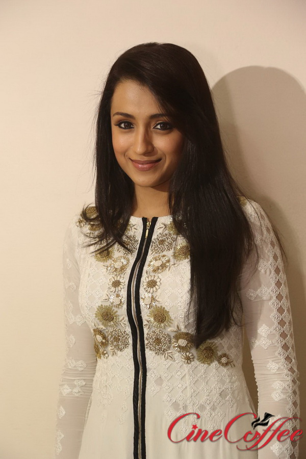 Actress Trisha Latest Stills, Trisha Sexy Photos, Hot Images