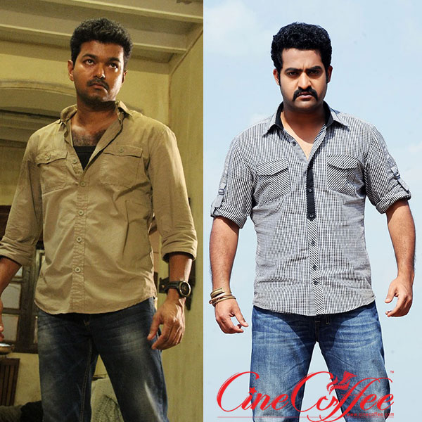 Jr NTR Finally Gives A Nod For Kaththi Remake