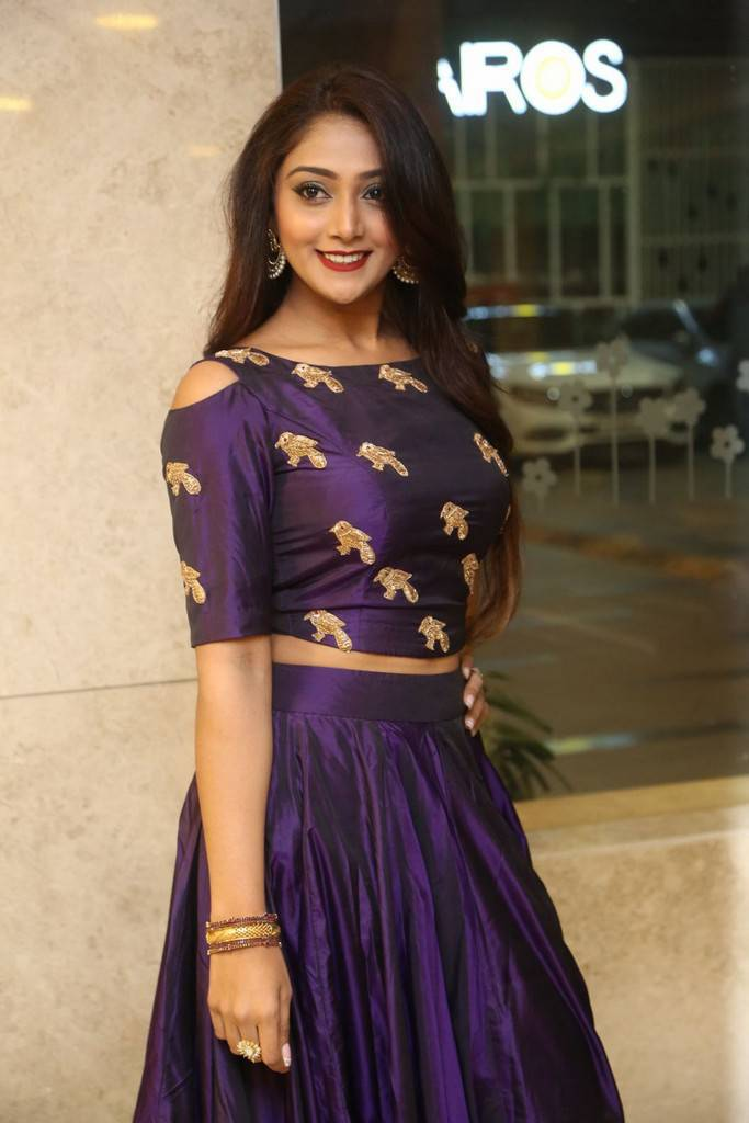 Natasha Doshi Photos At Jai Simha Movie Pre Release Event - south celebrities