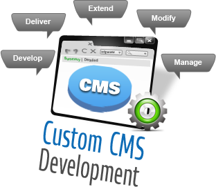 Best Custom CMS Development India