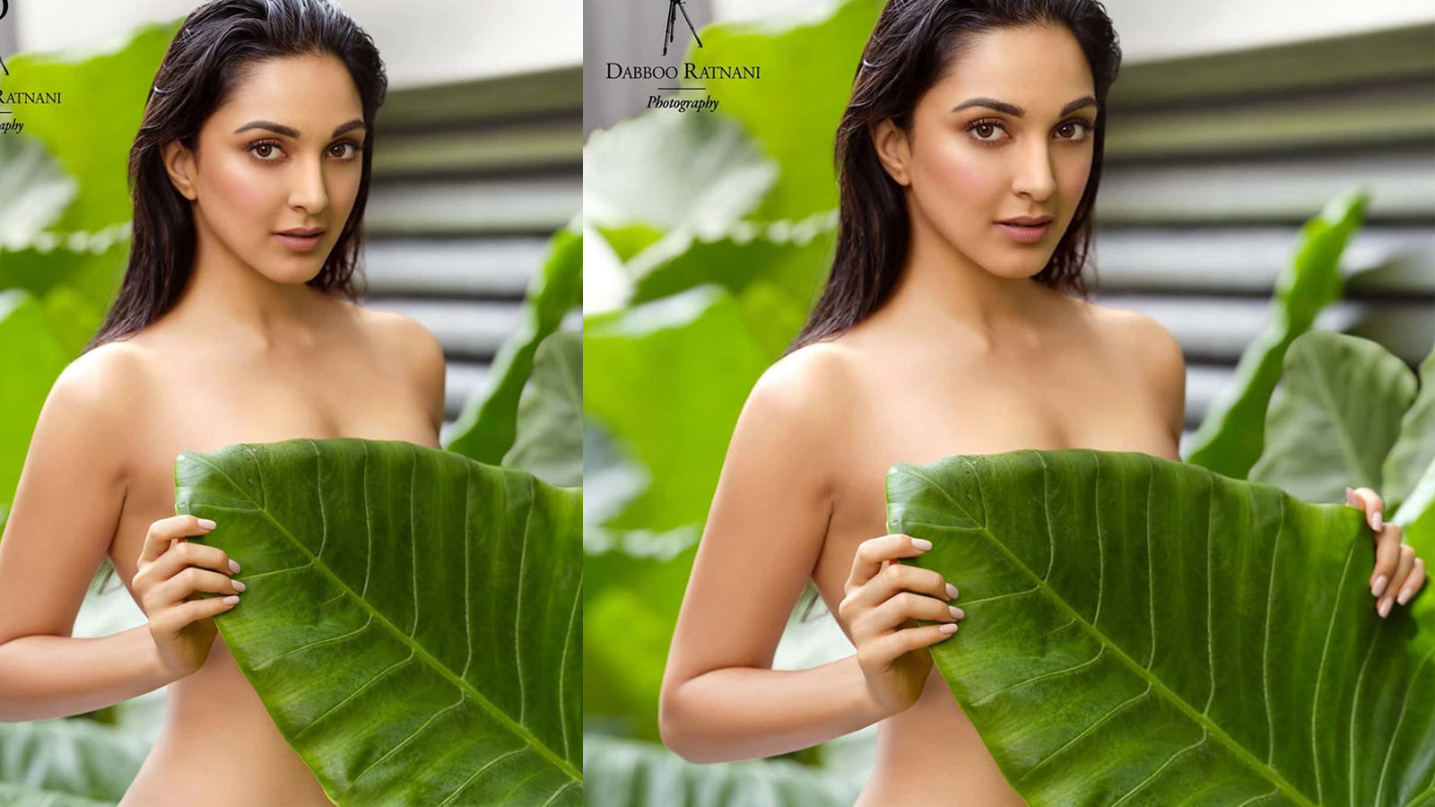 Kiara Advani Leaf Photo by Dabboo Ratnani, Claims International Photographer