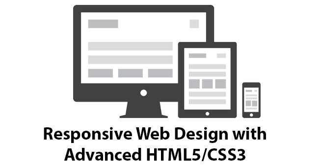 HTML5 Website Design Company in India